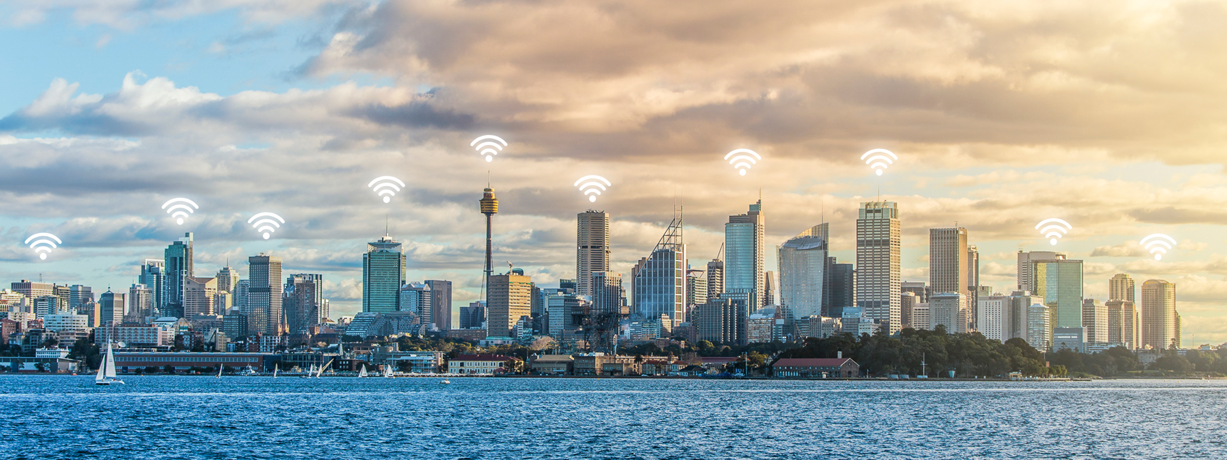Wifi symbols above the Sydney skyline over the harbour at dusk