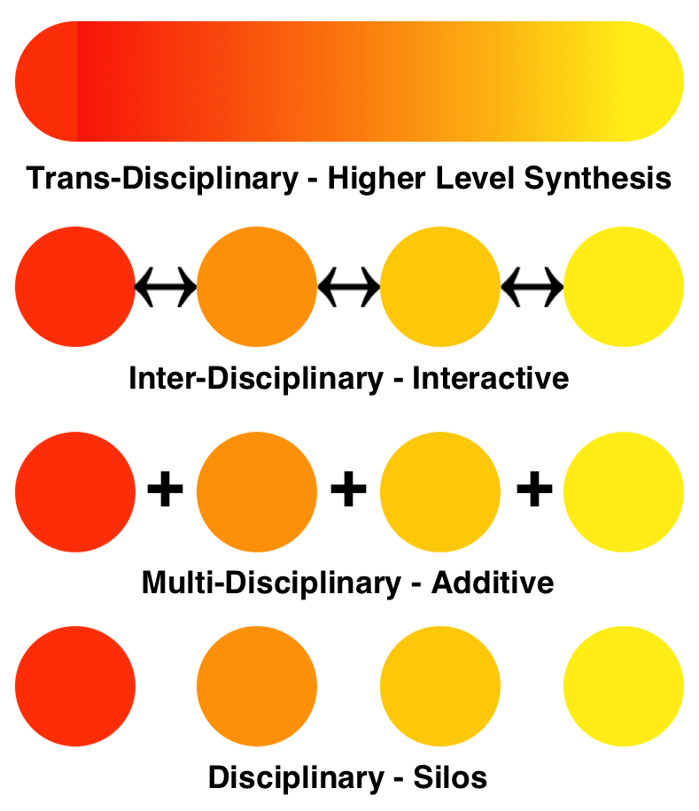 Transdisciplinarity diagram