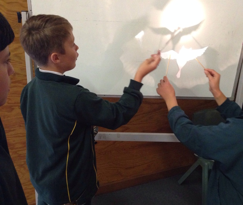 Boys experimenting with shadow puppets