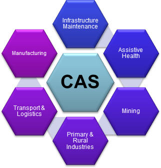Diagram showing the six CAS research themes