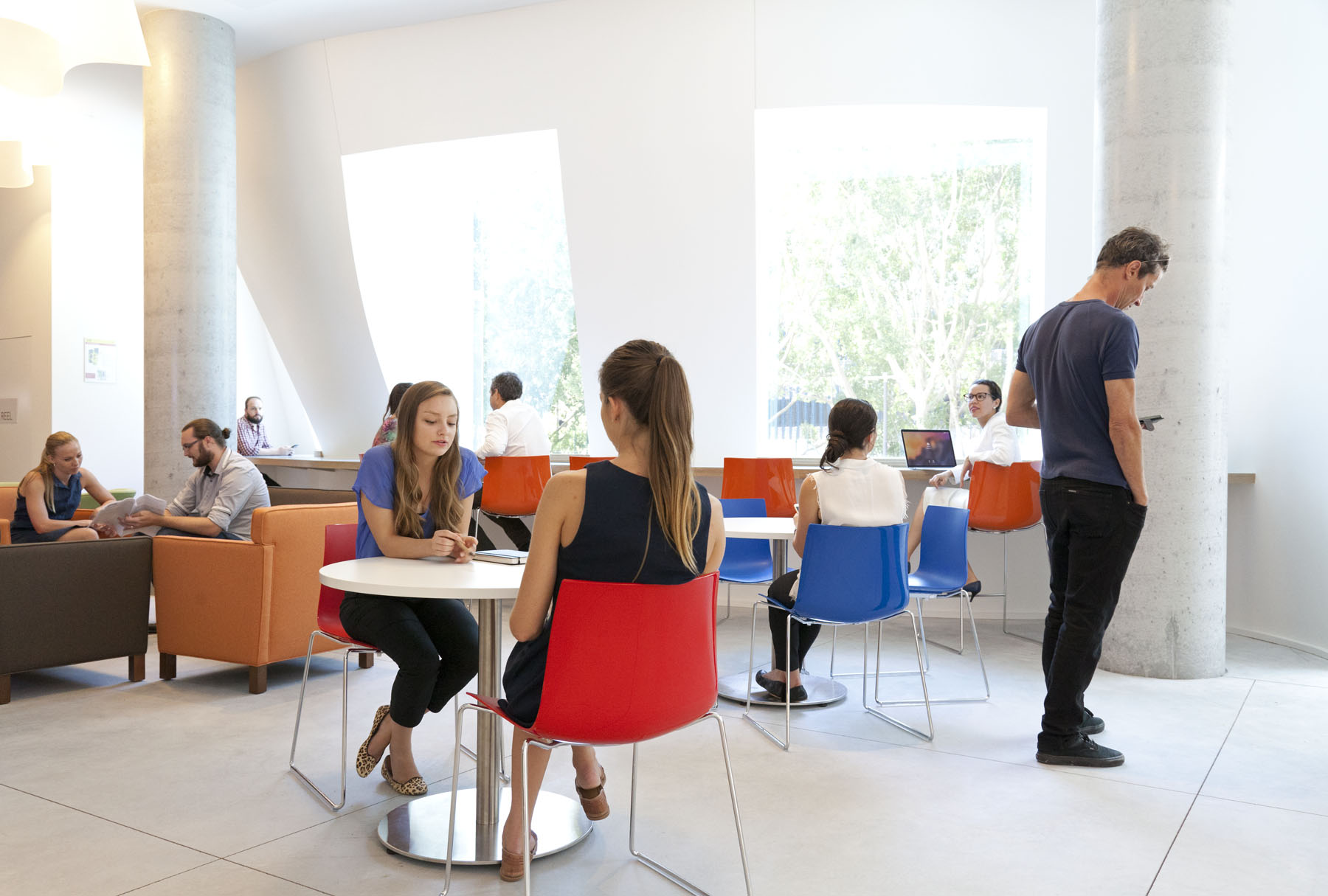 The café on level 3 is situation at the Good Lines entry and attached to a student lounge. Designed to reflect the look of the oval classroom, the café counter is manufactured out of glue-laminated radiata pine beams.
