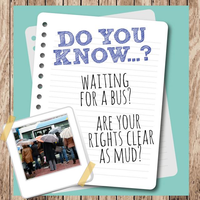 Do you know Bus Splash