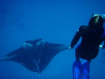 Picture of Lucy and manta