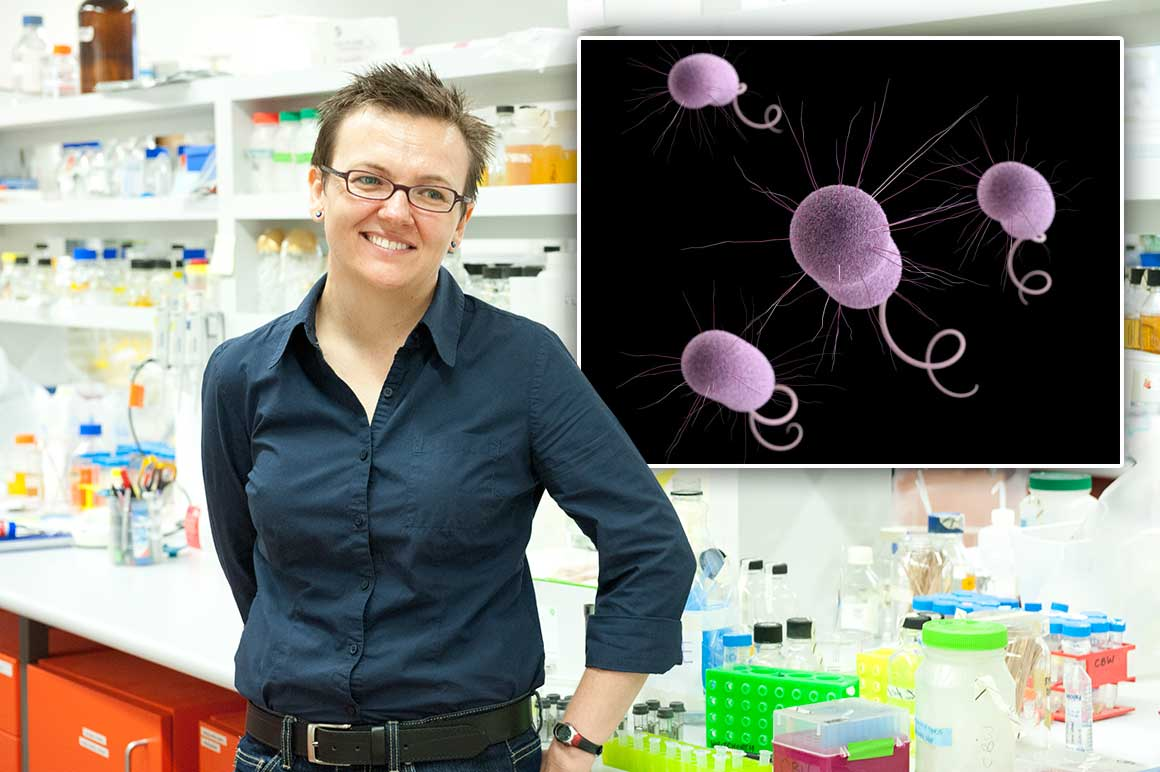 Photo of UTS researcher Cynthia Whitchurch, with Pseudomonas aeruginosa (inset)