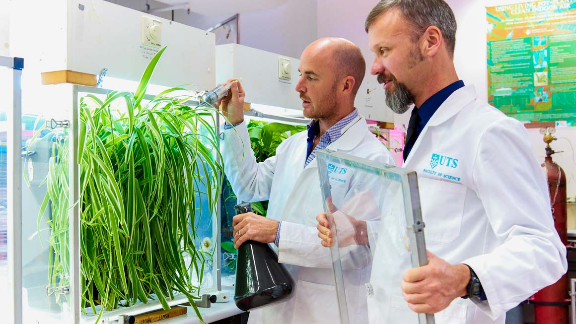 Photo of UTS researchers in a science lab examining a plant