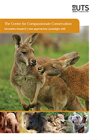 Centre for Compassionate Conservation brochure cover