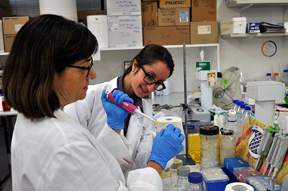 Dr Heba Al Khamici in a UTS Life Science laboratory