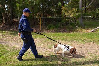 A police officer training a scent-detection dog in the oustkirts of Sydney