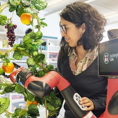 Photo of female researcher operating a robotic arm to pick fruit