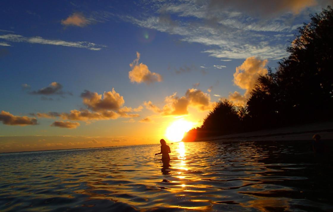 Rarotonga field trip, Cook Islands – sample collection