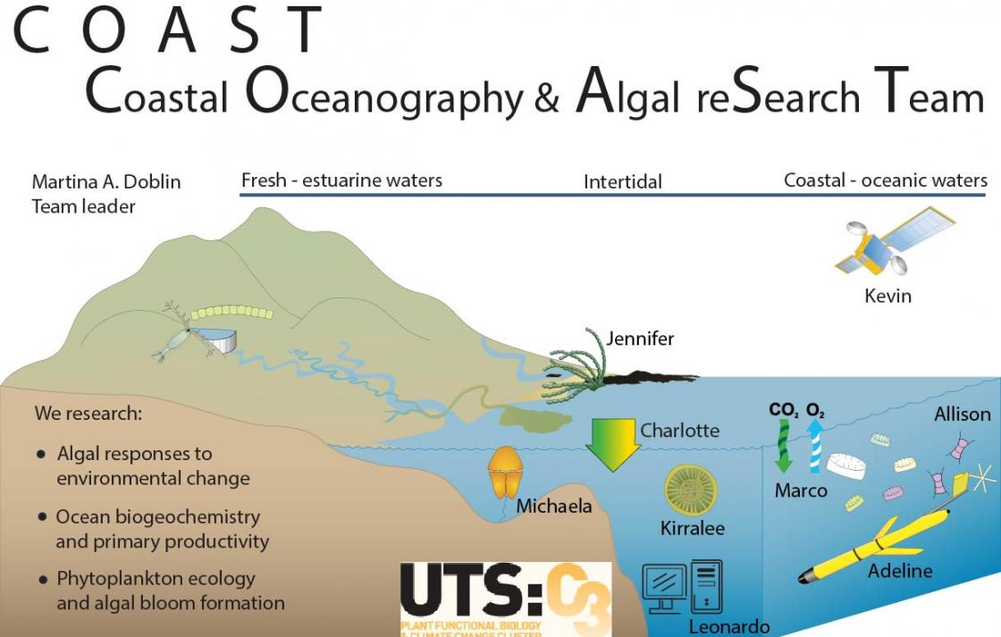 Conceptual Site Model of some of the research undertaken by C3 Productive Coasts research team