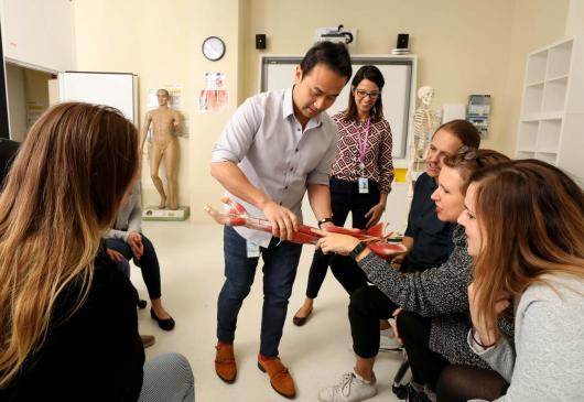 Physiotherapy students examining anatomical model of a forearm