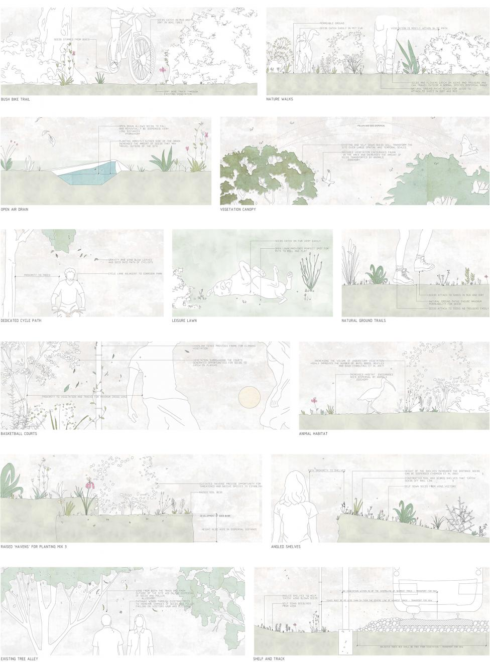 DAB Student Project: Wandering Ecologies: Anthropochory as a Method of Restoration; Seed Dispersal in the Urban Landscape, by Brittany Johnston