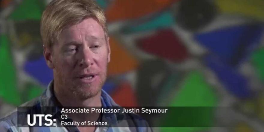 Thesis on carbon nanofibers