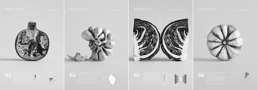Photography  of 4 vegetables in black and white