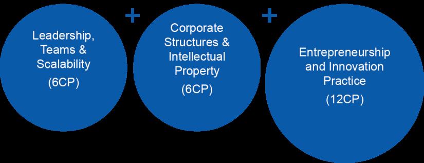 MBAe Entrepreneurship structure