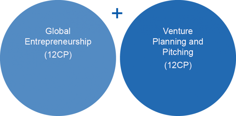 MBAe Venture Acceleration structure