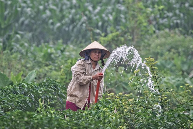 Vietnamese rural communities need water filtration technologies