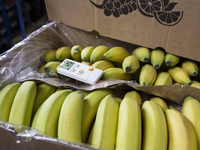 bananas with data log