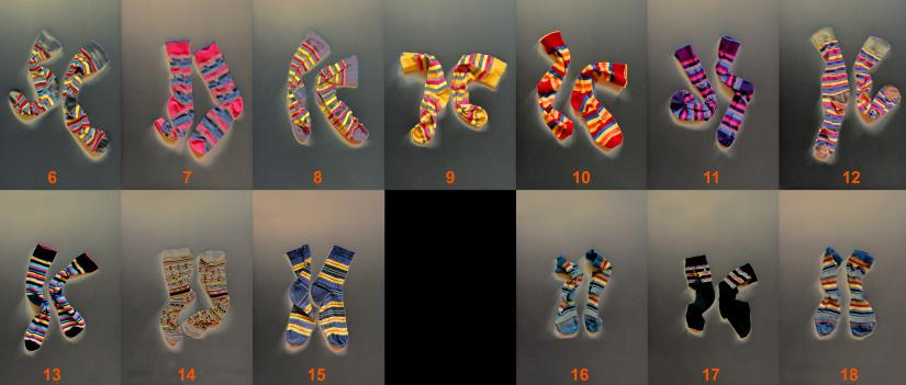 ​  Artwork titled Sock chromosomes by Gina Glover   ​