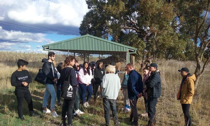 A group of UTS Interior Architecture students meet with Elder River Bank Franks in front of a caged tree in Dubbo