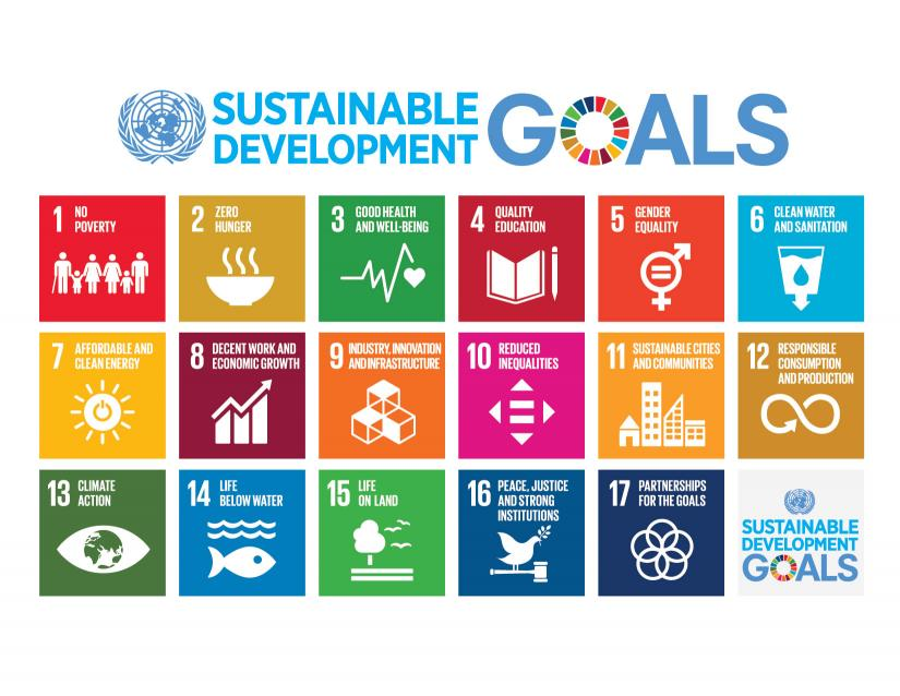The graphic of the UN Sustainable Development goals