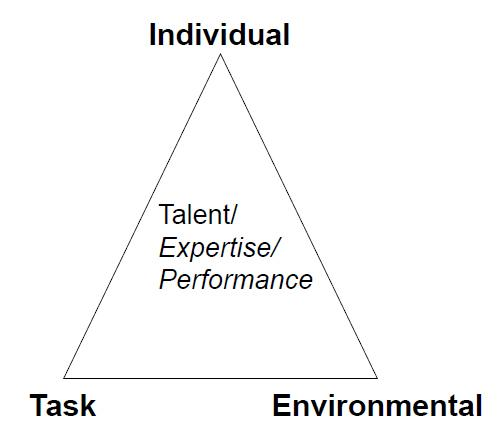 Task, individual, environment triangle graph