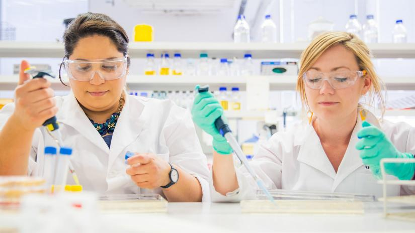 Two UTS researchers at work in a science lab