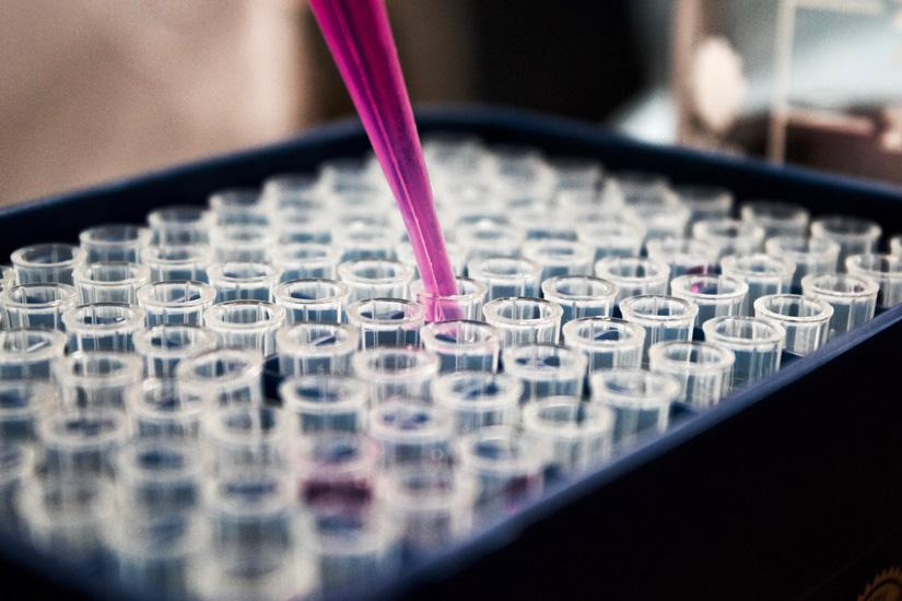 Close up of tray of test tubes, glass flute dispenses pink liquid into each test tube.