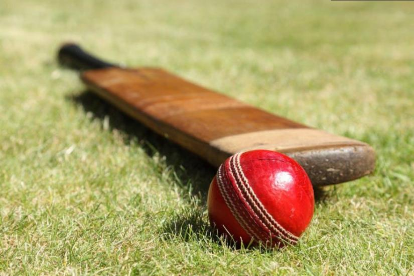 Cricket bat and ball on grass