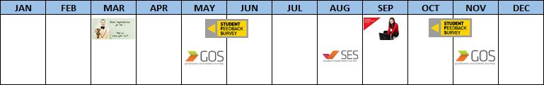 Survey Timeline