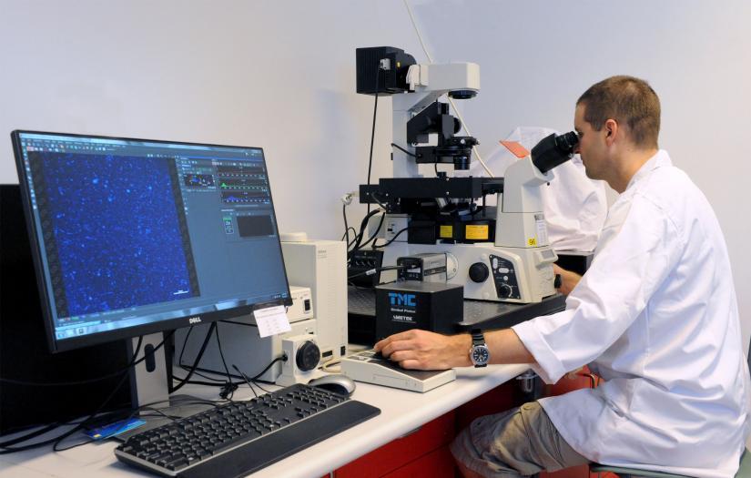 FI Microscope