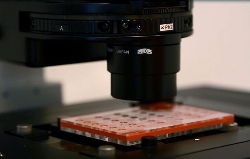 Microfluidic Slides