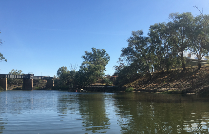 A pump on the lower Darling River extracts water for the township of Menindee.