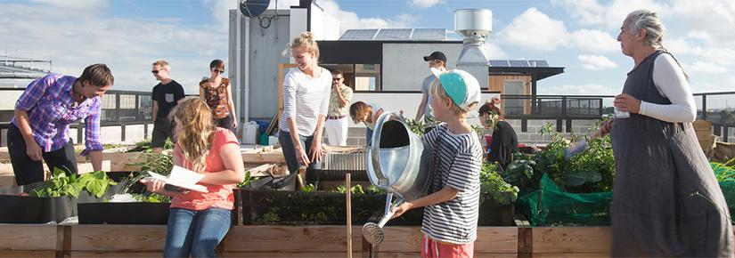 A family tending a rooftop garden at the Commons community development in Melbourne