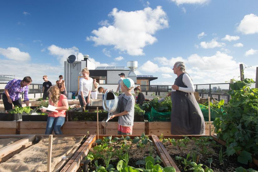 Residents on rooftop garden at the The Commons
