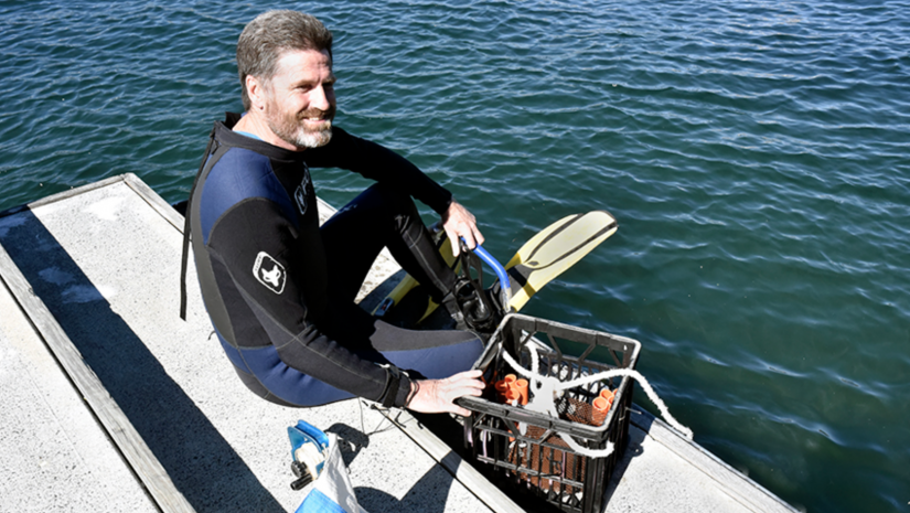 Professor David Booth prepares for a dive in Sydney Harbour