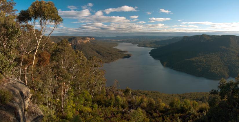 Landscape photo of Warragamba Dam and surrounding bushland.