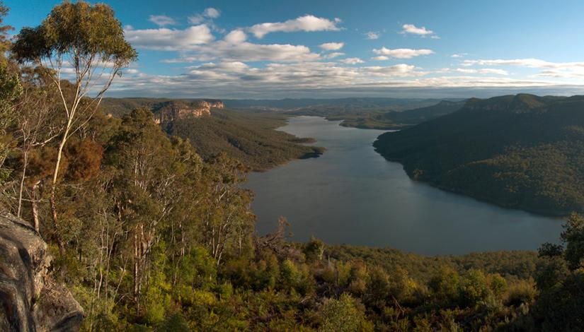 Landscape photo of Warragamba Dam and surrounding bushland.