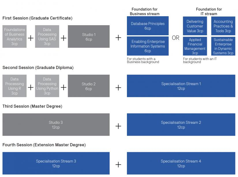 Masters in Business Analytics Course Structure