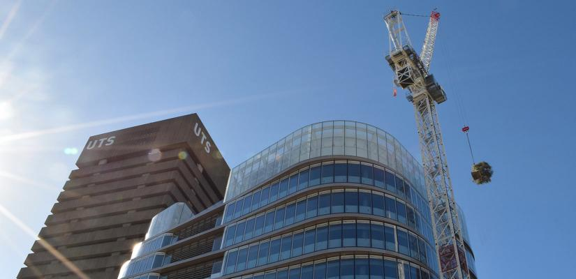 A tree is craned into place on the UTS Central rooftop