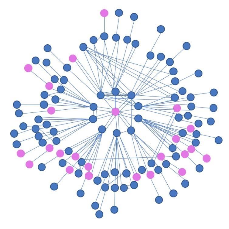 Dot visualisation of a network, in pink and blue. At the centre, a single pink dot, surrounded by all blue dots. The network expands out, with some scattered pink dots but the majority blue.
