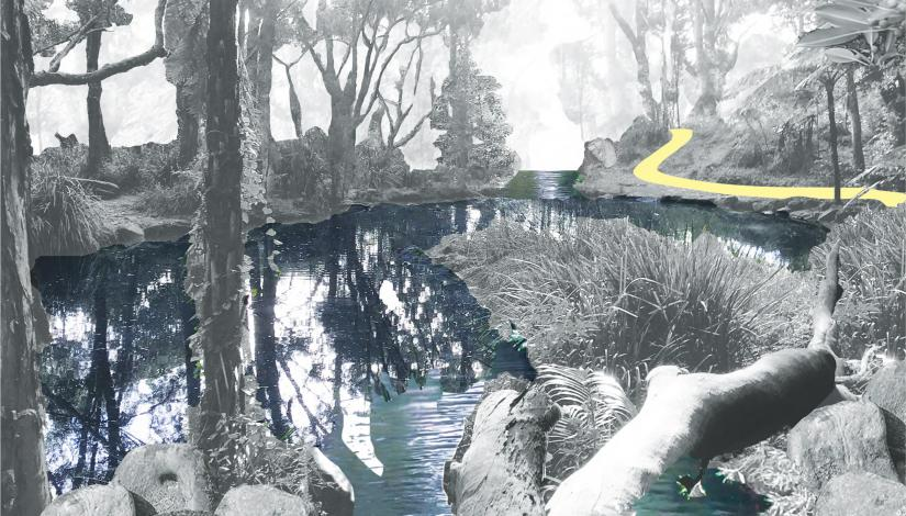 Collage of a creek and walking track