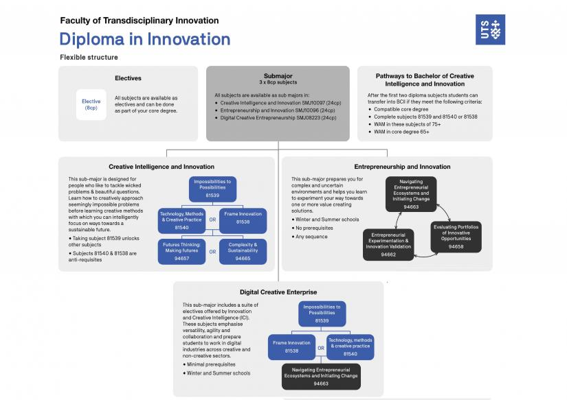 Diploma in Innovation flexible structure diagram