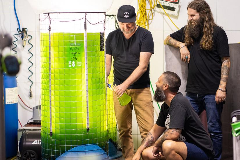 Young Henrys brew team with an algae bioreactor