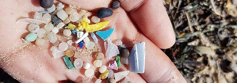 A handful of marine microplastics