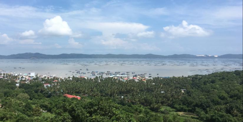 An elevated view across a bay filled with fishing boats