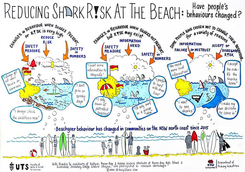 Infographic, the ways in which beachgoer activity has changed
