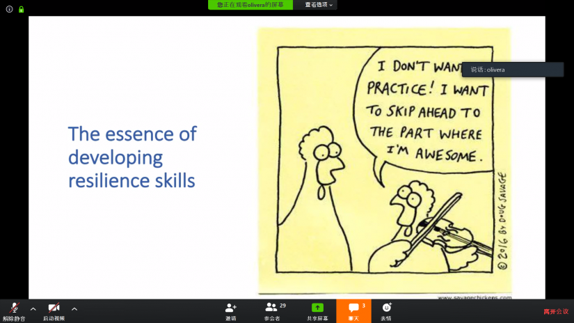 A slide from the Power Point presentation on the essence of resilience skills