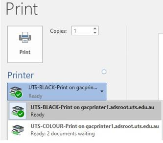 Screenshot of available print options from a general access or lab computer at UTS